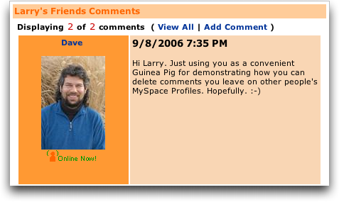 My space sample comment