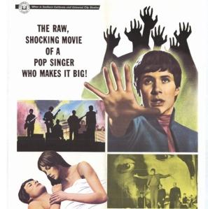 Privilegle Movie Poster