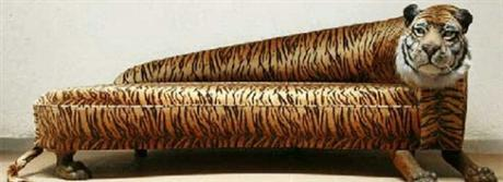 Tiger Skin Couch with Head