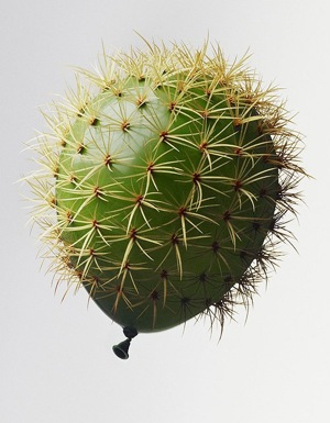 https://worleygig.files.wordpress.com/2012/03/cactus-balloon.jpg