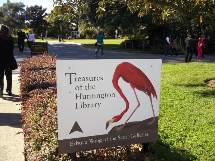 Huntington Library Flamingo Signage