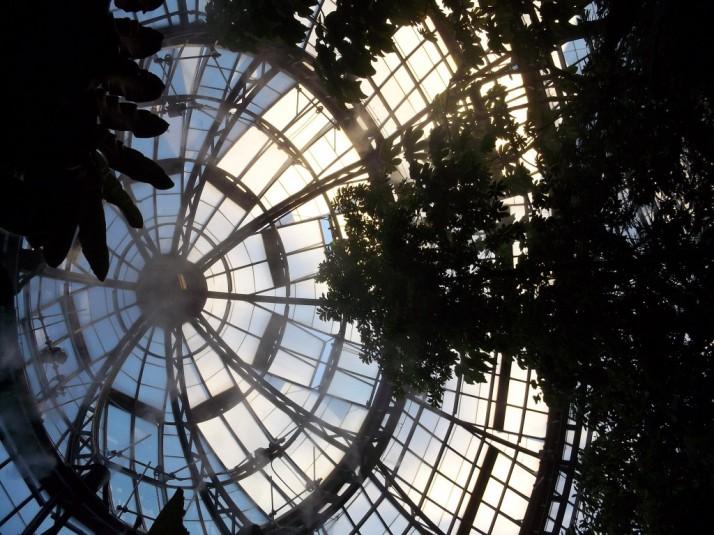 Huntington Library Rainforest Dome