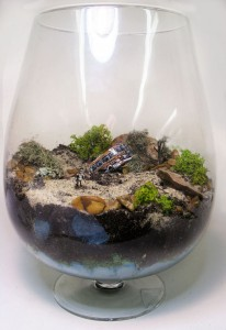 Breaking Bad Terrarium 2