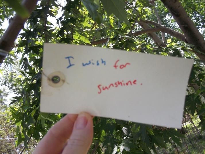 Yoko Ono Wish Tree Wish 2