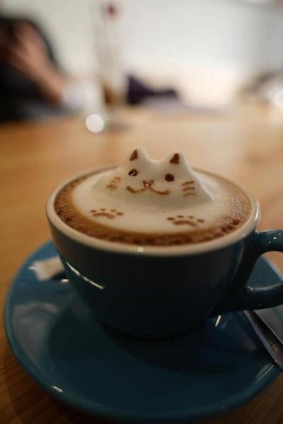 Cat Latte