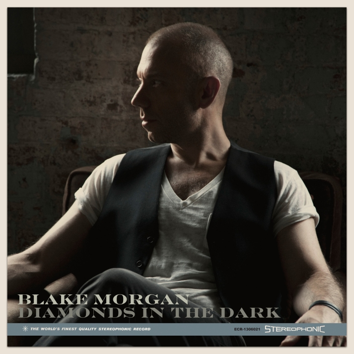 Blake Morgan Diamonds in the Dark Cover