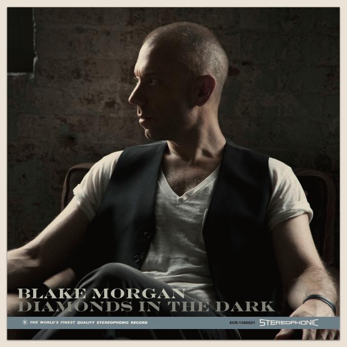 Blake Morgan Diamonds in the Dark Cover