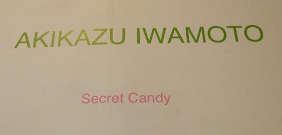 Akikazu Iwamoto Secret Candy