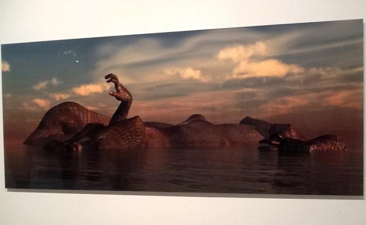 Kim Joon Island Alligator