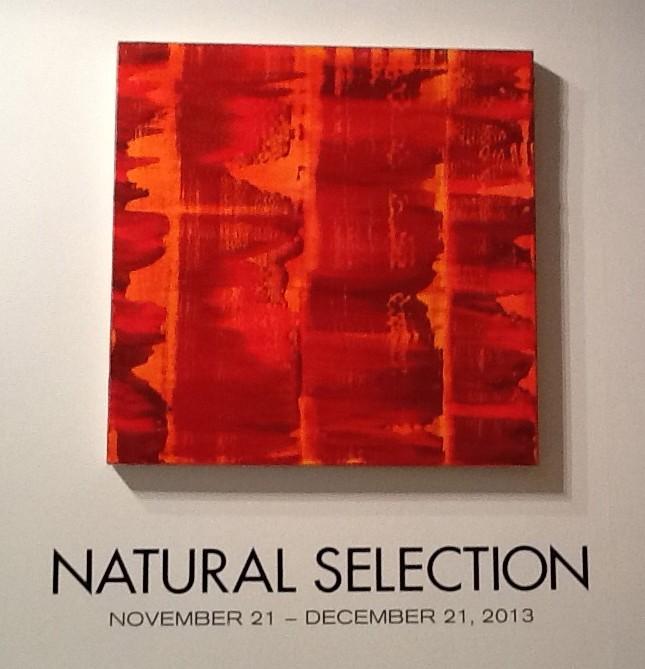 Natural Selection Signage