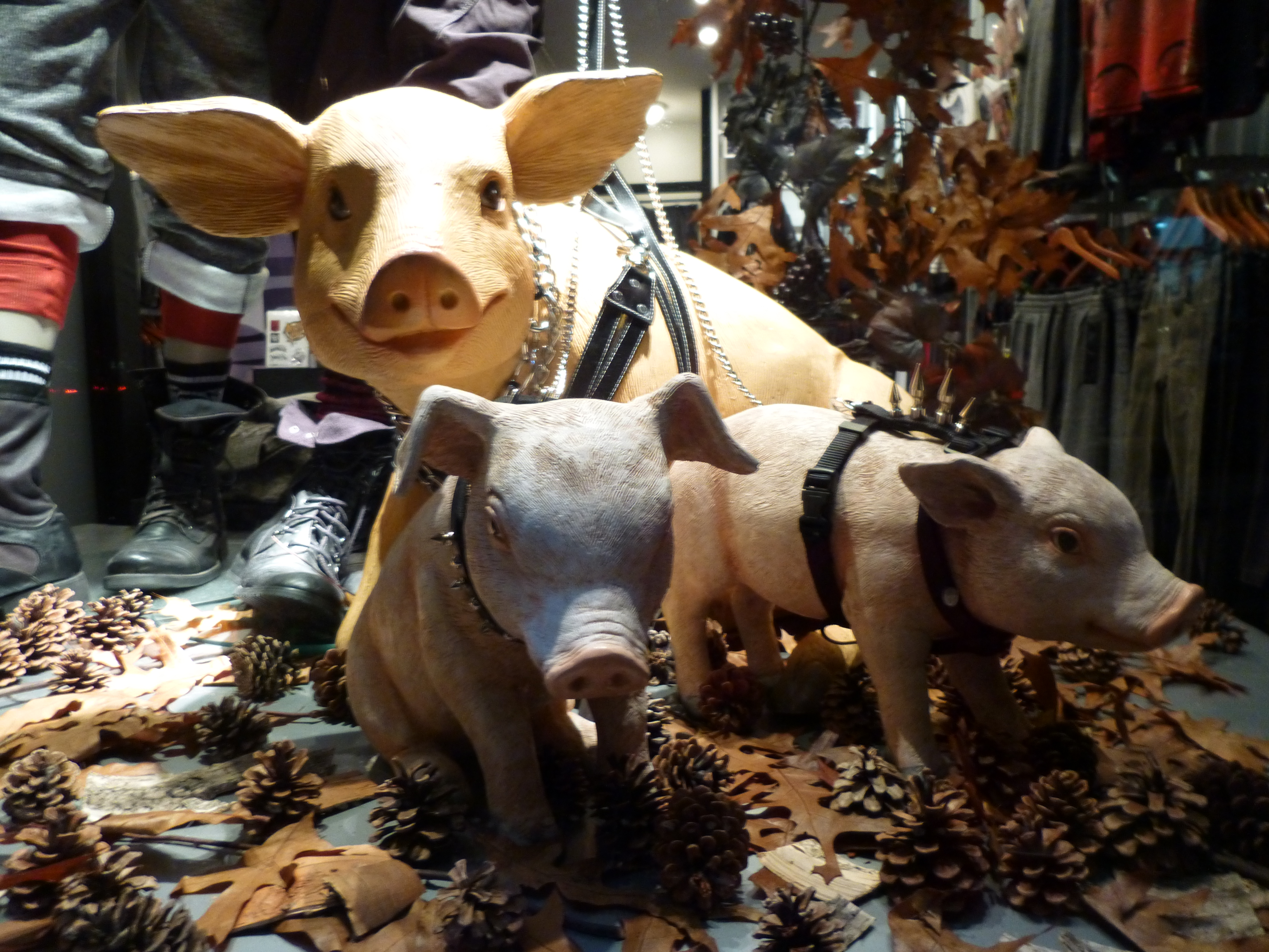 Gay leather pigs