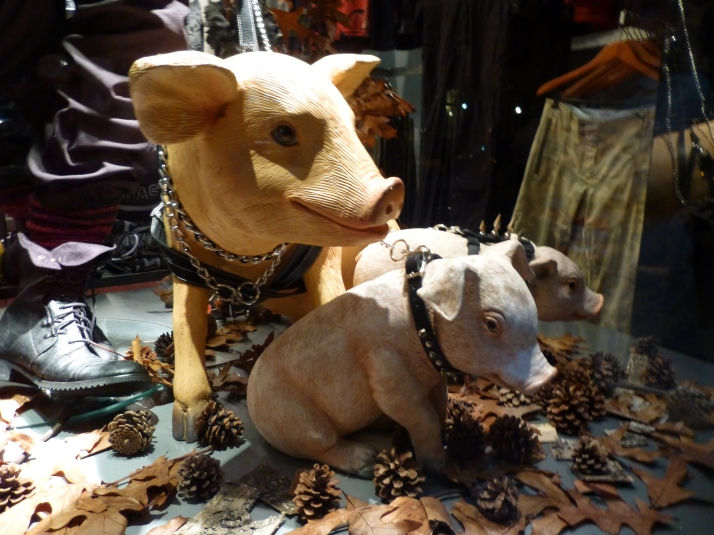 Leather Pigs 2