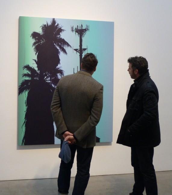 Glen Rubsamen Polygala Two Guys and Palm Trees