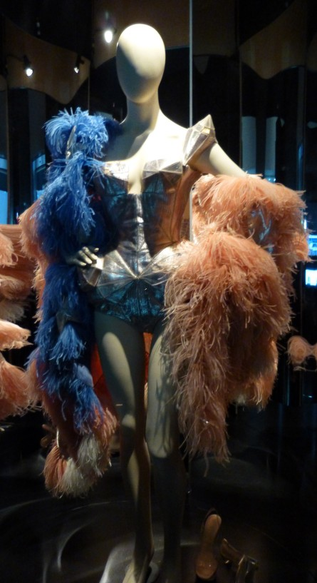 Feather Boa and Corset