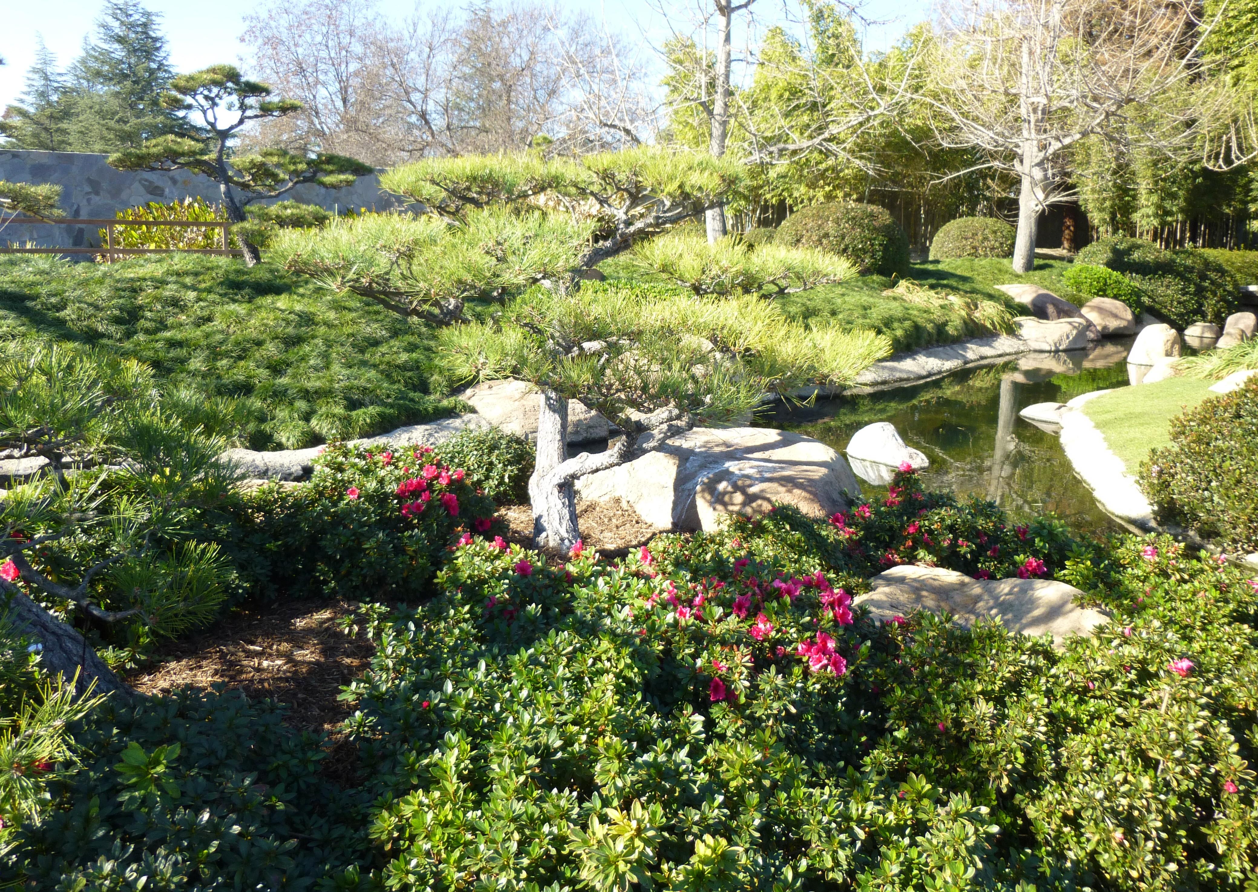 Los Angeles Japanese Garden: Japanese Garden, Balboa Park, California