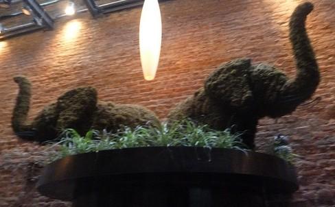 Elephant Topiary