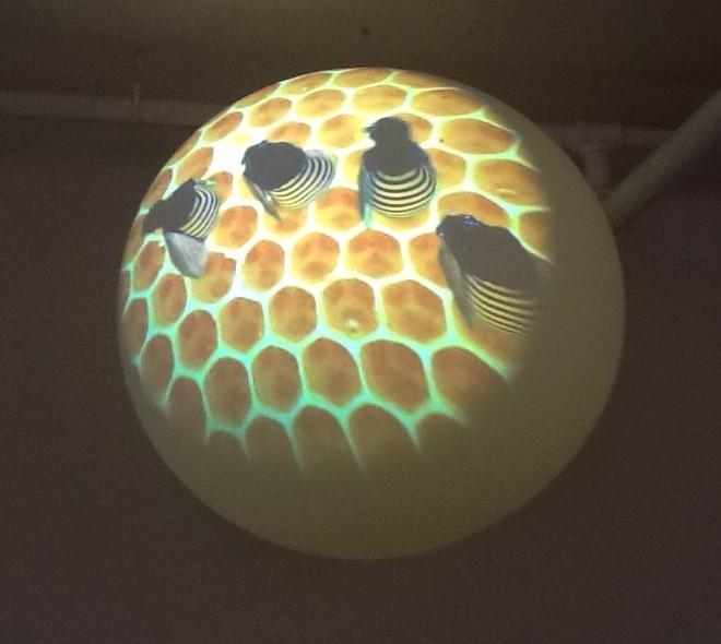 Global Beehive