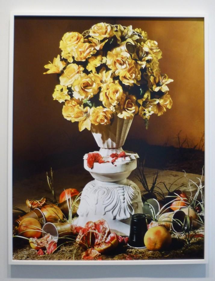 GoldenBoy Roses