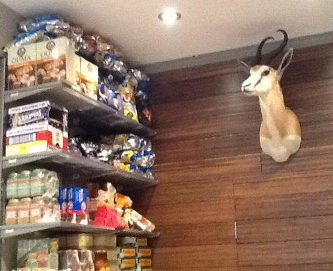 Store Interior with Antelope Head