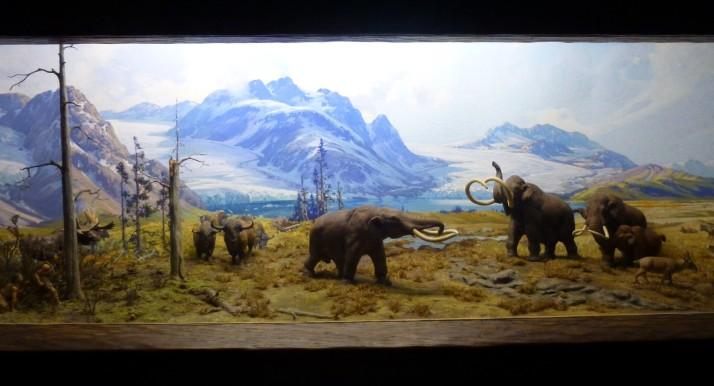 Ice Age Mammals