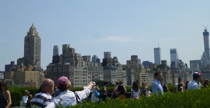 Central Park Sklyline from Roof of Met
