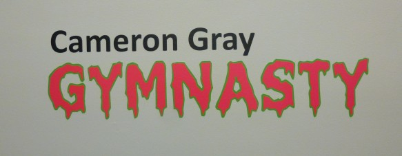 Cameron Gray Gymnasty Signage