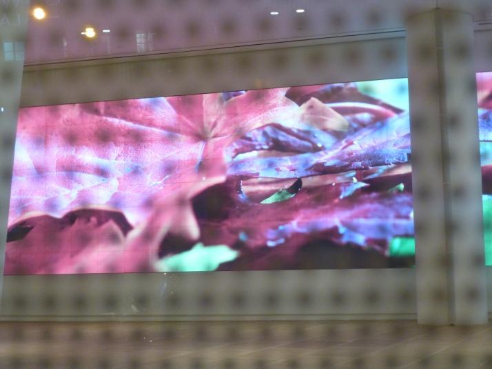 IAC Building Screens Detail