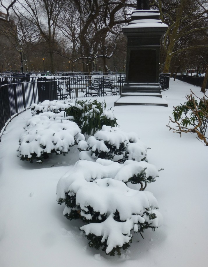 Snow on Bushes and Statue