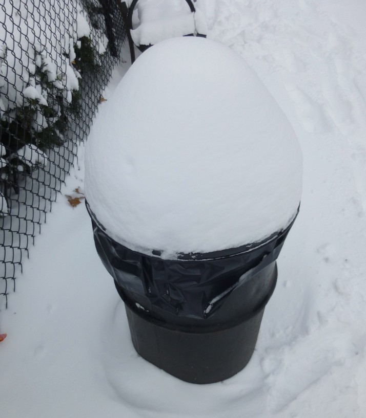 Snow Capped Trash Bin