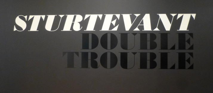 Sturtevant Double Trouble Signage