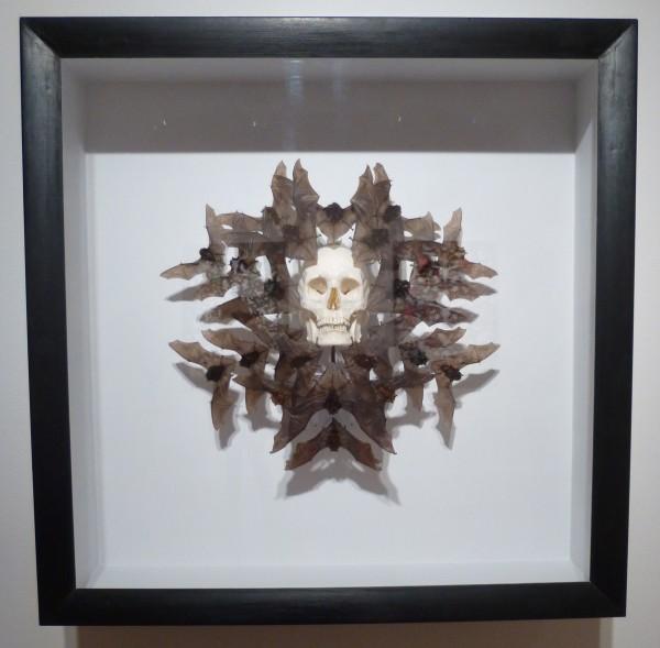 Skull with Bats