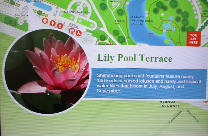 Lily Pool Terrace Signage
