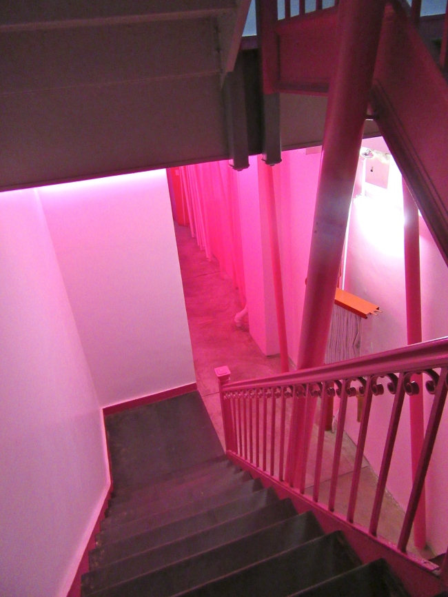 Pink Stairs Down