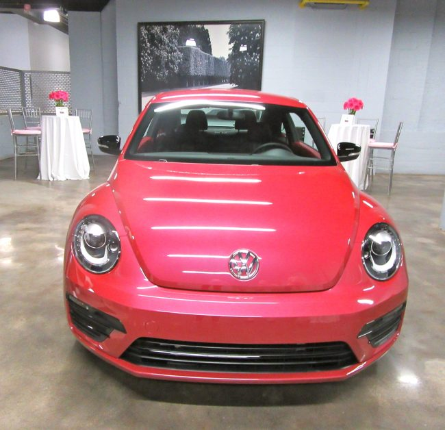#PinkBeetle Front