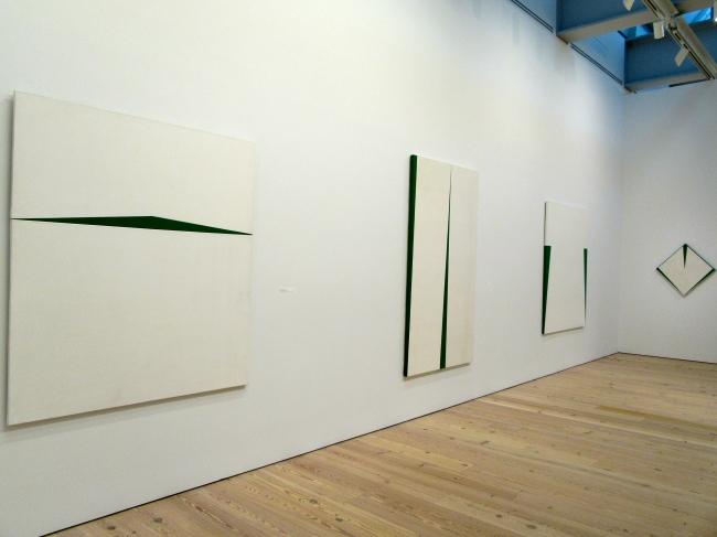 Blanco Y Verde