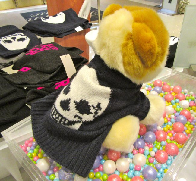 Skull Sweater on Toy Dog