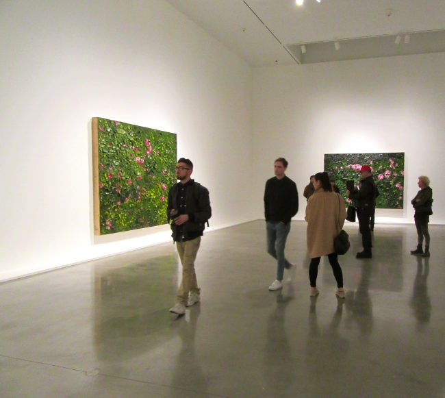 Schnabel Installation View