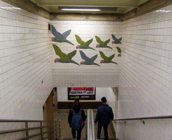 Parrots Tile Mosaic Full