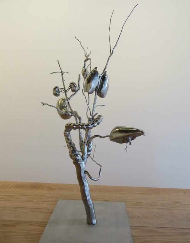 Organ Tree