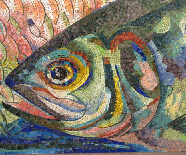 Fish Tile Mosaic Close Up