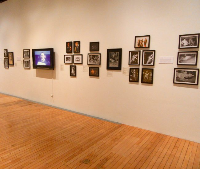Myopia Installation View