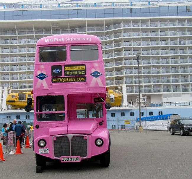 Pink Sightseeing Bus
