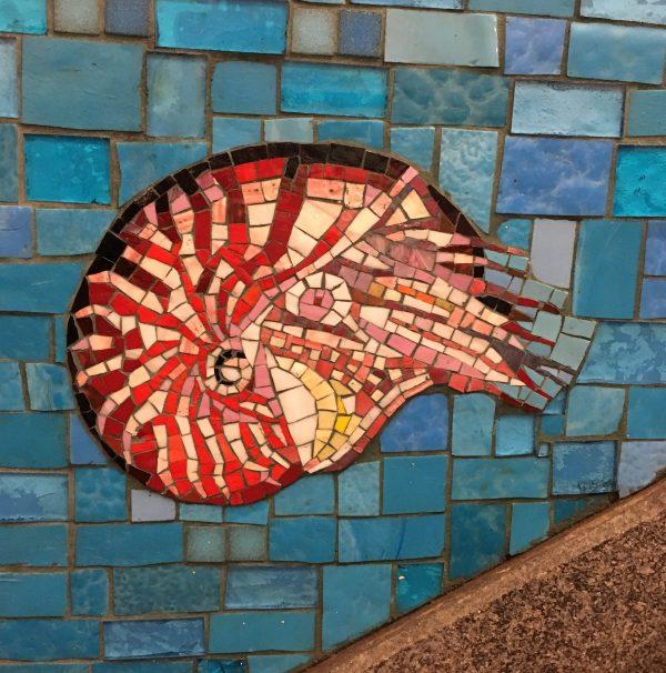 Undersea Mural Nautilus Detail