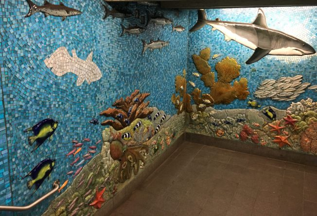 Undersea Mural