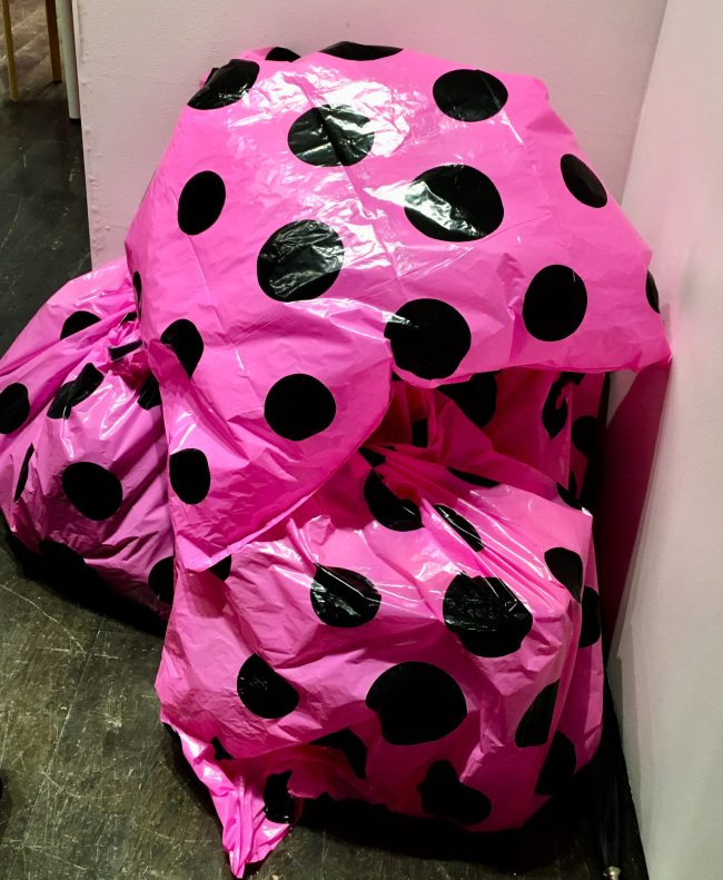 Pink Polka Dot Garbage Bags On The Floor