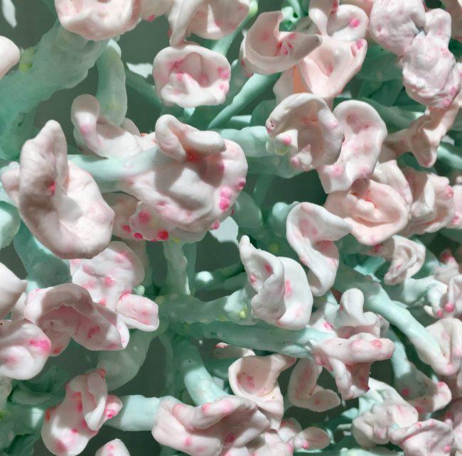 Bloomers By Stefan Gross (Detail)