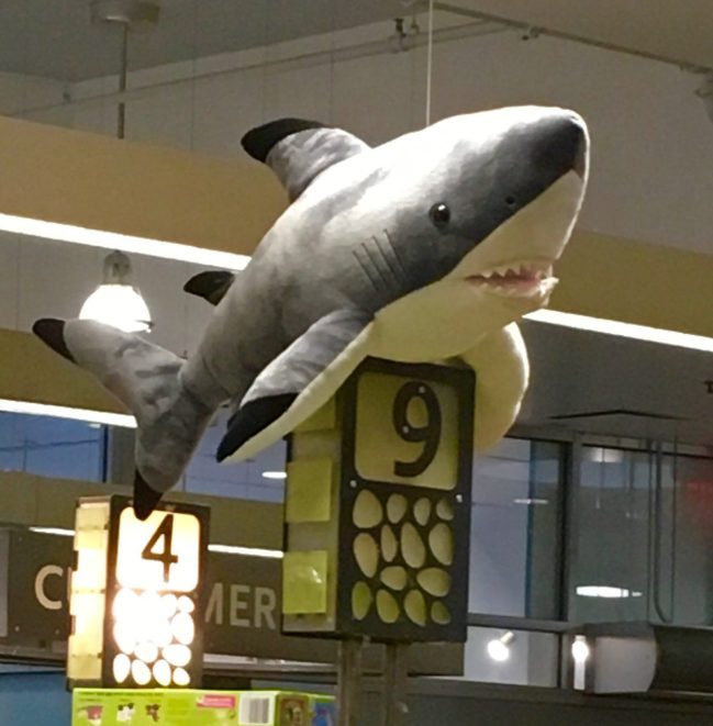 Shark Attack Checkout Aisle