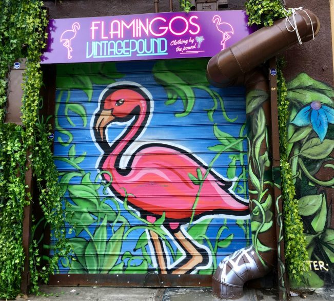 Flamingos Vintage Pound