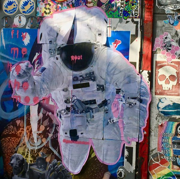 Astronaut By Poet Photo By Gail Worley