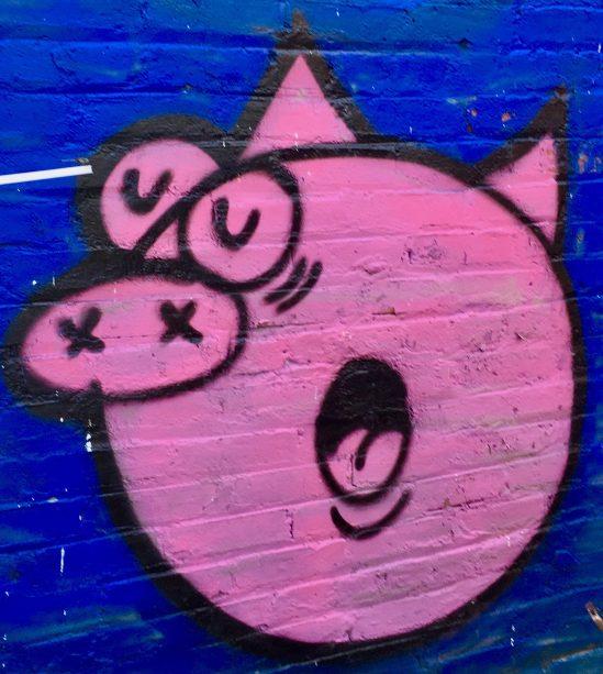 pink ugli pyg photo by gail worley